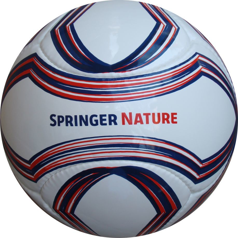 6 Panel Fußball Springer Nature