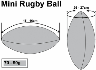 Mini Promotion Rugby